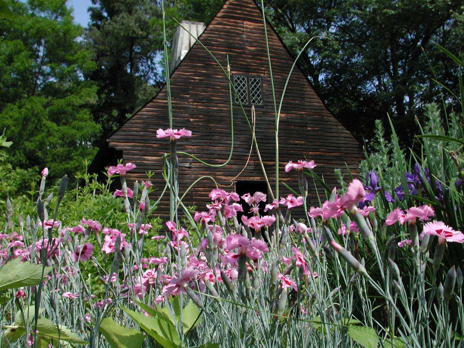 The kitchen garden is filled with seasonal color